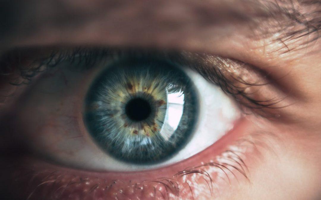 Iris of an eye